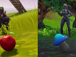 Check out this handy Fortnite map of all apple and mushroom locations